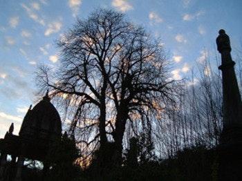 Arnos Vale Cemetery & Anglican Chapel venue photo