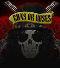 Guns or Roses artist photo