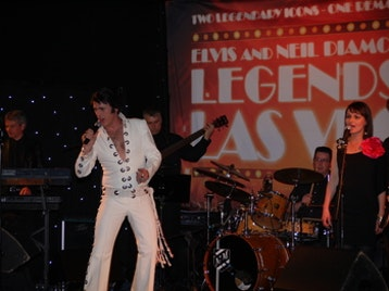 Elvis In Vegas: Fisher Stevens picture