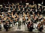 Northampton Symphony Orchestra artist photo