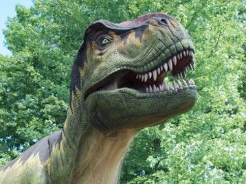 DinoZoo picture