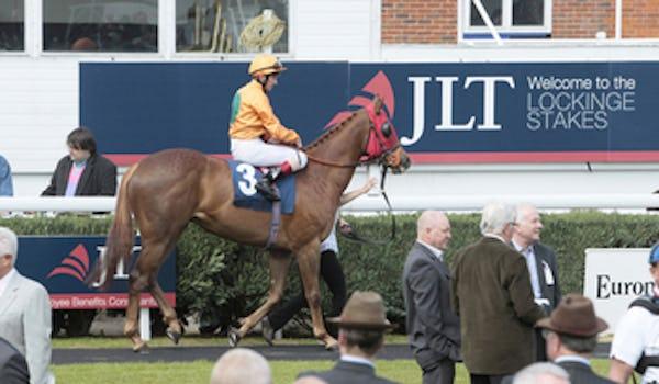 Newbury Racecourse Events