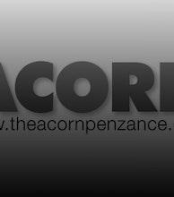 The Acorn artist photo