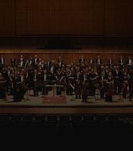 Royal Philharmonic Orchestra (RPO) artist photo