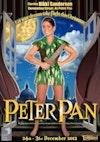 Flyer thumbnail for Peter Pan: Nikki Sanderson, Dawn Bellamy, Joe Chambers, David McClelland