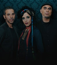 Niyaz artist photo