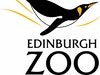 Edinburgh Zoo photo