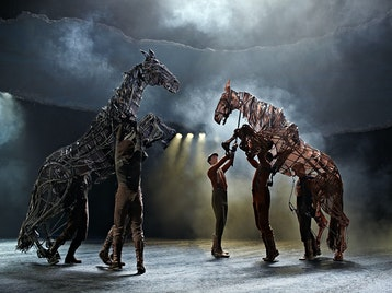 War Horse (Touring) picture