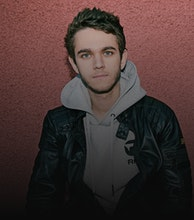 Zedd artist photo