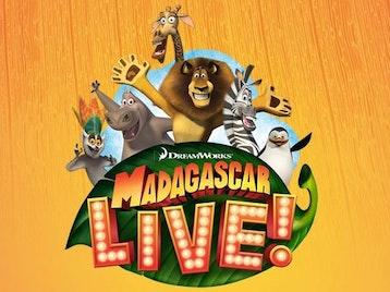 Madagascar Live! picture