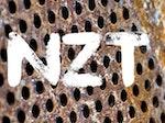 NZT artist photo