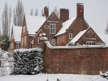 Christmas At Winterbourne House And Garden picture