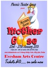 Flyer thumbnail for Mother Goose - The Panto