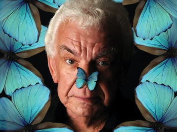 Barry Cryer - Butterfly Brain: Barry Cryer picture