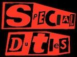 Special Duties artist photo