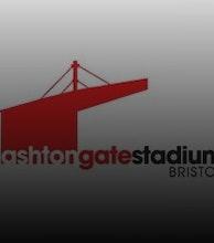 Ashton Gate Stadium artist photo