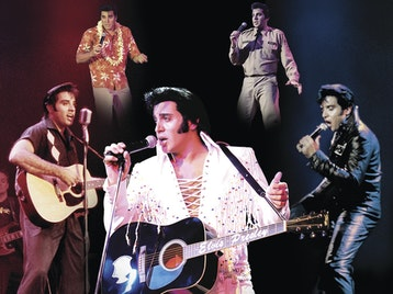 The Elvis Years picture