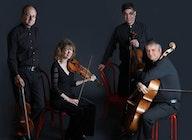 The Maggini Quartet artist photo