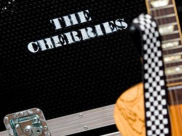 The Cherries artist photo