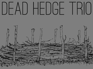 Dead Hedge Trio artist photo