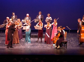 European Union Chamber Orchestra picture