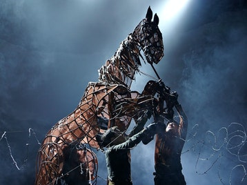 War Horse picture