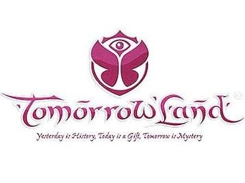 Tomorrowland Festival picture