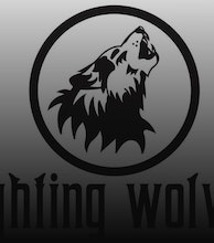 Fighting Wolves artist photo