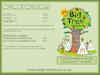 Flyer thumbnail for Big Tree Festival