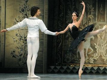 Don Quixote: The Mikhailovsky Ballet picture