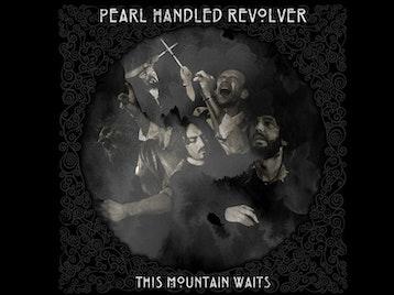Pearl Handled Revolver artist photo