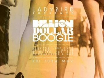 Ladybird Presents Billion Dollar Boogie picture