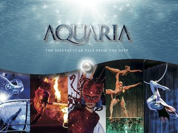 Aquaria artist photo