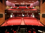 St Helens Theatre Royal artist photo