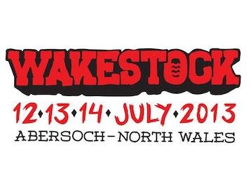 Wakestock 2013 picture
