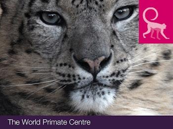 Twycross Zoo venue photo