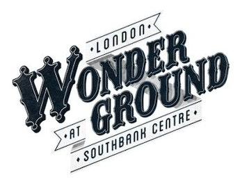 London Wonderground 2013 - Limbo picture
