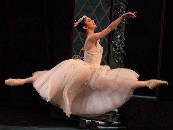 The Bolshoi Ballet artist photo