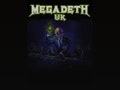 Megadeth UK event picture
