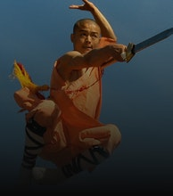 Masters Of Shaolin Kung Fu artist photo