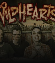 The Wildhearts artist photo