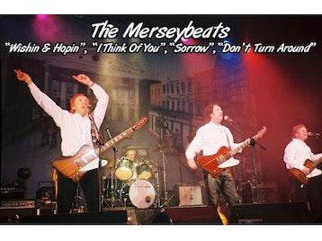 The Merseybeats artist photo