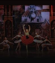 Moscow City Ballet artist photo