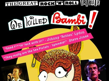 The Great Rock'n'roll Tribute: Sex Pistols Experience + Ed Tudor-Pole picture