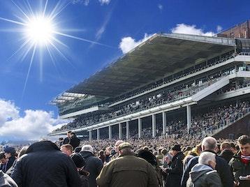 Cheltenham Racecourse picture