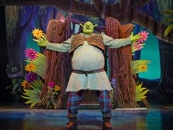 Shrek The Musical (Touring) picture