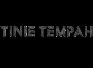 Tinie Tempah artist insignia