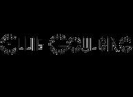 Ellie Goulding artist insignia