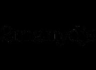 2ManyDJs artist insignia