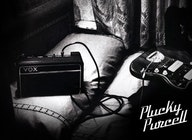 Plucky Purcell artist photo